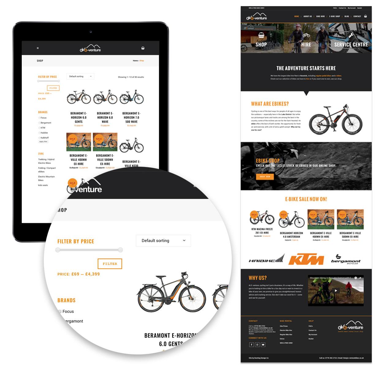 E-Venture Website