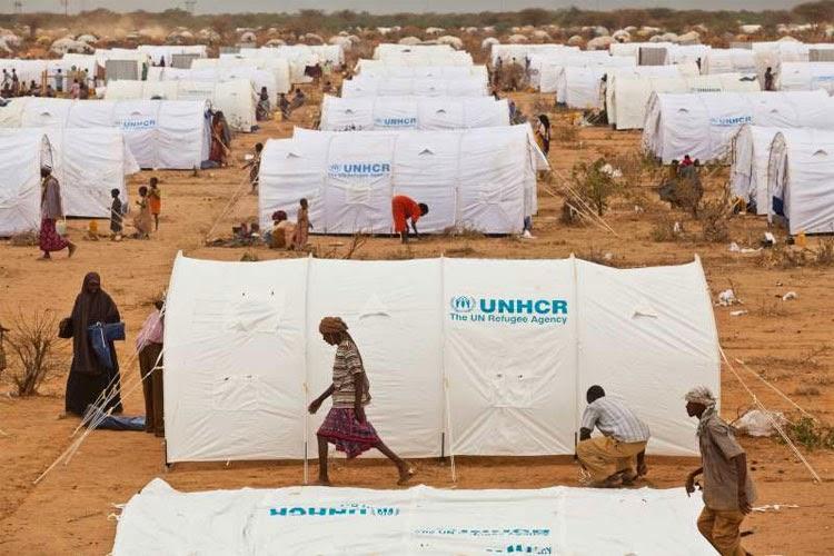 Rifugiati: la malattia del mondo