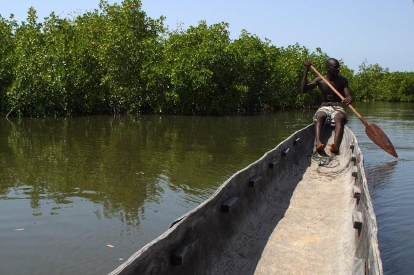 Viaggio in Senegal. Terza puntata: il fiume Saloum