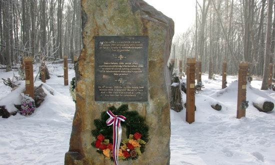 Hejce (Hu), luogo dello schianto aereo con 42 soldati morti (foto_mosr-sk)