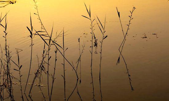 acqua-lago_(StefanoMontagner_BY)