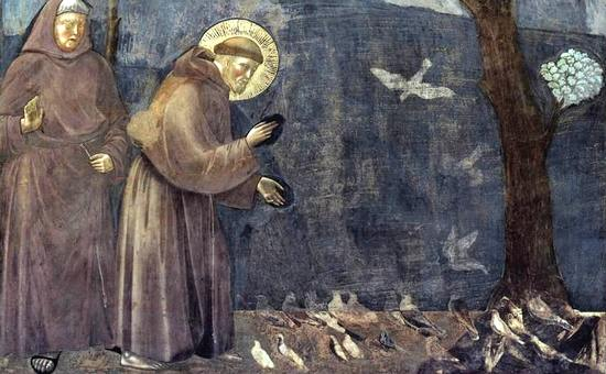francesco-predica-uccelli