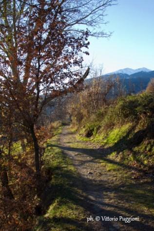 Bosco_a_Senin_Quota_BP_Aosta