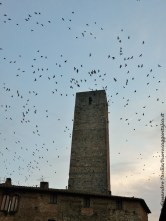 San Gimignano volo su torre