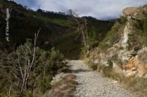 Sentiero_Lago_della_tina_Parco_del_Beigua