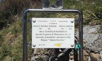 Canate di Marsiglia