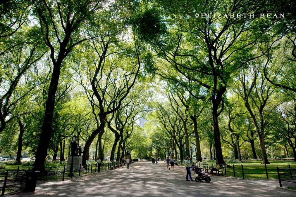 NYC |9/09|