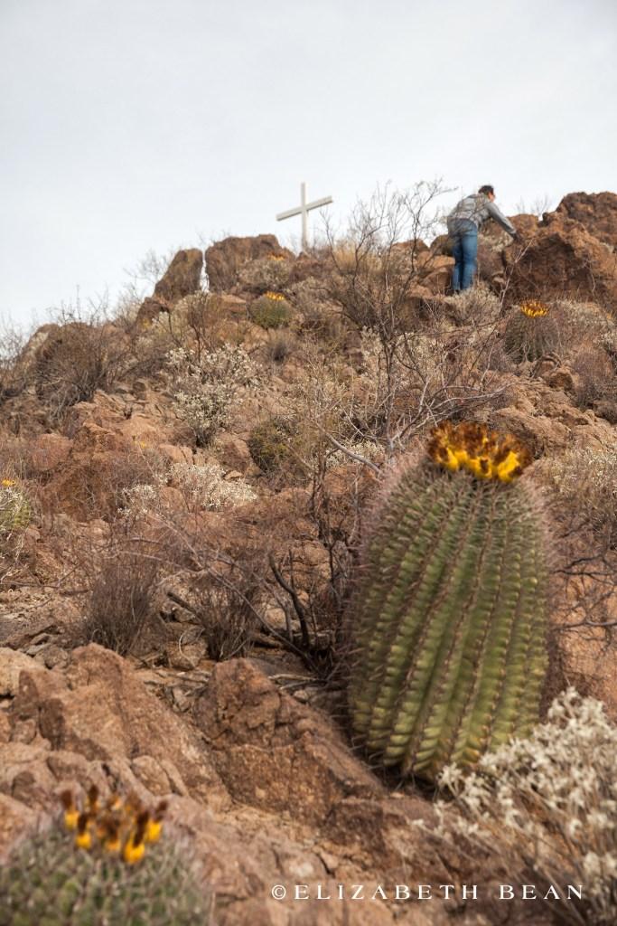 122816 Tucson 23w