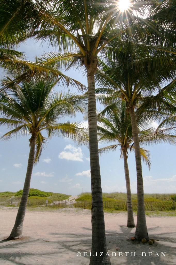 050408 Miami 28