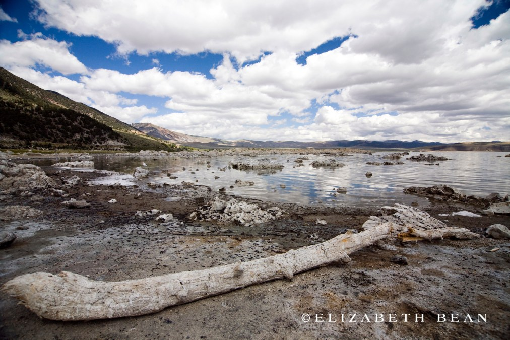 082910 Mono Lake 10