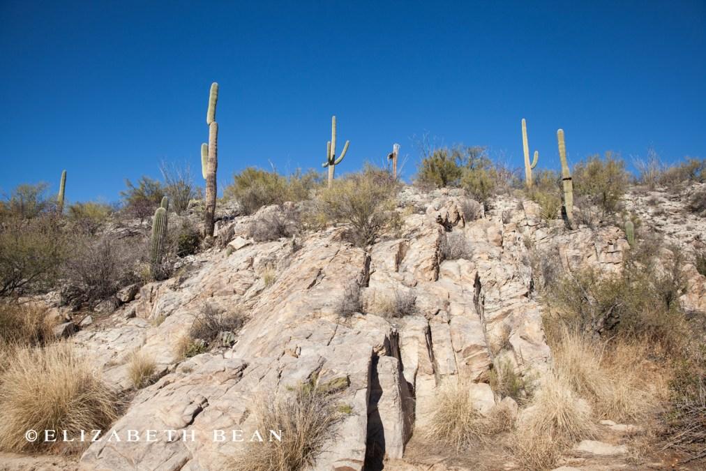 010615 Tucson 31