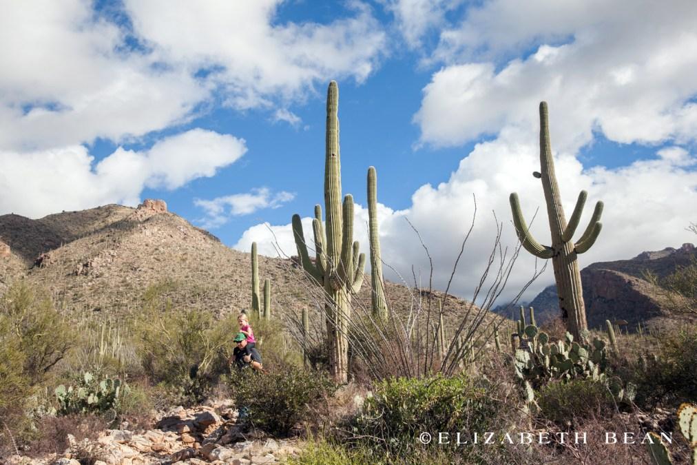 112615 Tucson 45