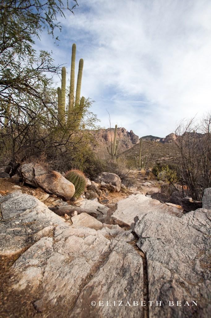 122412 Tucson 16