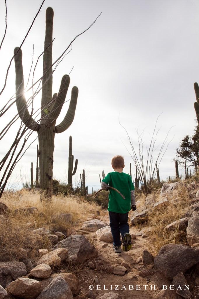 122412 Tucson 36