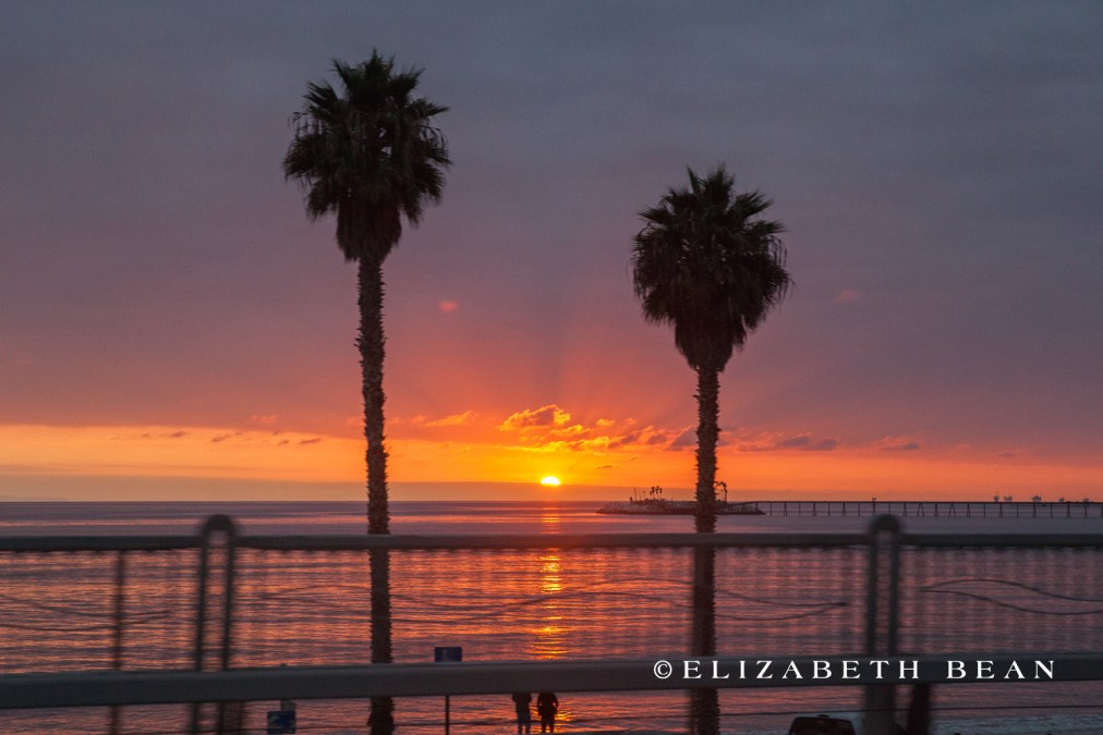 111114 Sunset 08