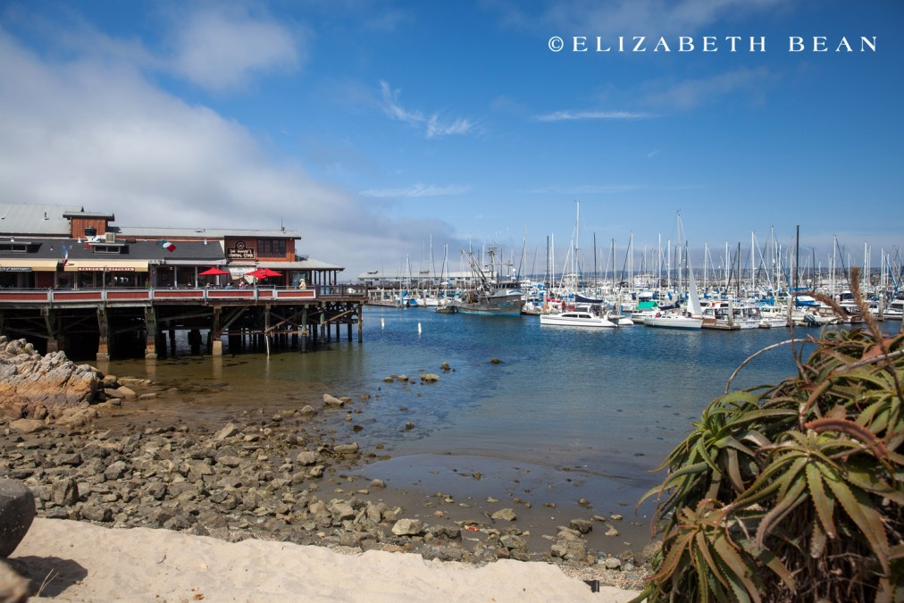 053015 Monterey 05