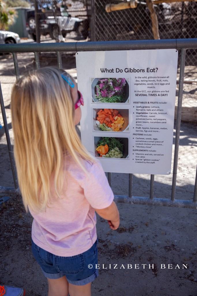 071215 Gibbon Center 06