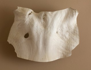 """34"""" x 22"""" x 9"""" Bleached Madrone Burl '09"""