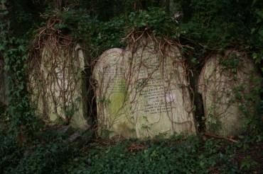 Highgate Cemetery in London – Neuer Friedhof