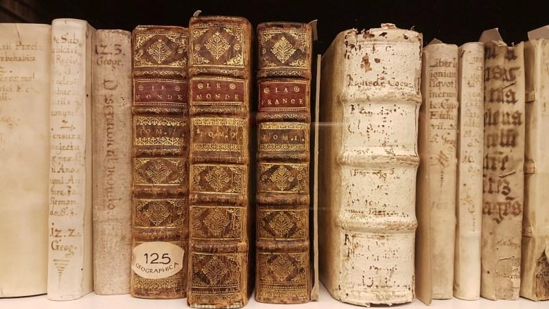 alte Bücher, antiquarische Bücher, Antiquariat, schönste Bibliothek in Deutschland,