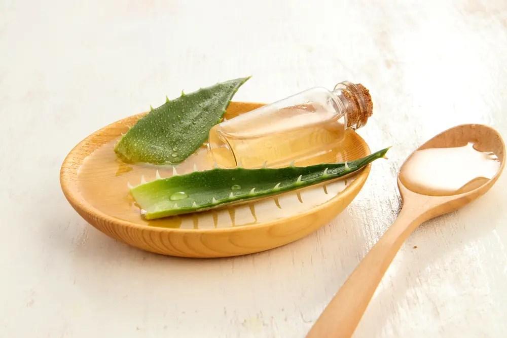 aloe vera plant gebruik - lifehacks maak zelf cosmetica