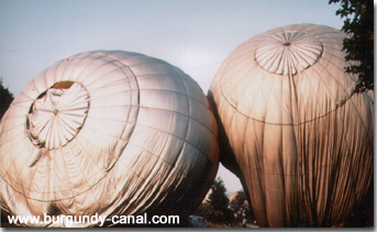 Ballooning in Burgundy