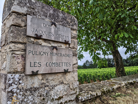 Puligny-Combettes 2020