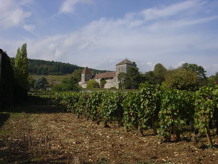 beautiful gevrey