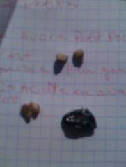 Ripe seeds