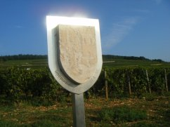 Sun on CortonBress Hospices sign