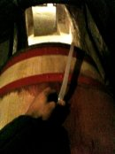 holding siphon in Charmes-Chambertin