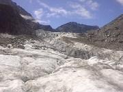 glacier mint?