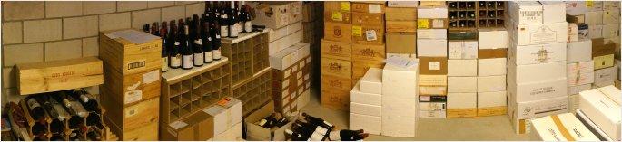 cellar-survey