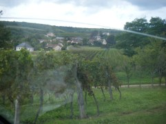 thro-van-windscreen-view-of-Arcenant-Hautes-Cotes