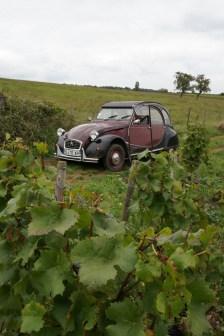 Visiting the Hautes Côtes de Beaune
