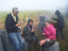 Day-11-Early-morning-Hautes-Cotes.-Vendangeurs-coffee-break-revival.-Sandrine-centre-Charleen-in-pink-showing-how-cold-they-are