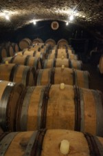 A cellar(!) in Puligny