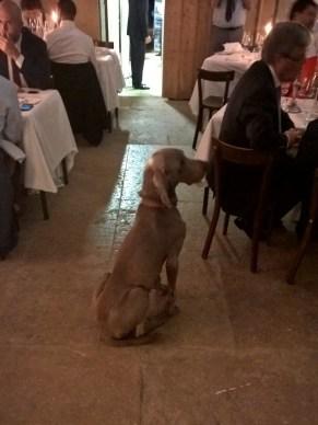 [Arack] Hmm, still no sausages...