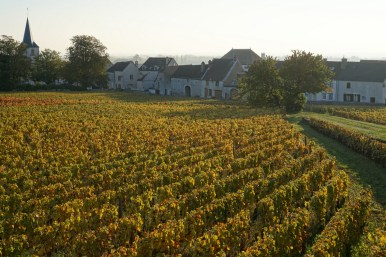 The lower part of Chassagne Clos St.Jean