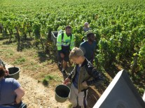Pre-lunch-exit-of-last-of-Chambolle-Villages-from-on-le-Camion