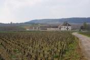 Vin de France in Auxey...
