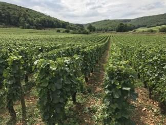 Les Marchais to the Combe de Lavaux