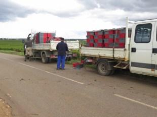 T-LB's trucks in Charmes-Chambertin