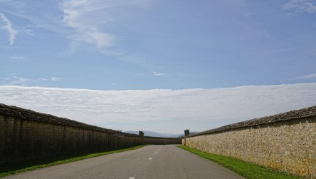 Exiting Meursault, direction Puligny...