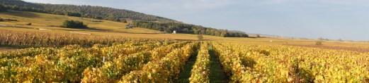 Over Puligny Pucelles towards Garenne