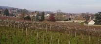 Over Fonteny towards Gevrey and Brochon