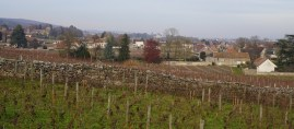 Over Fonteny towards Gevrey and Brochon