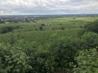 Over Beaune Clos de la Feguine to the town...