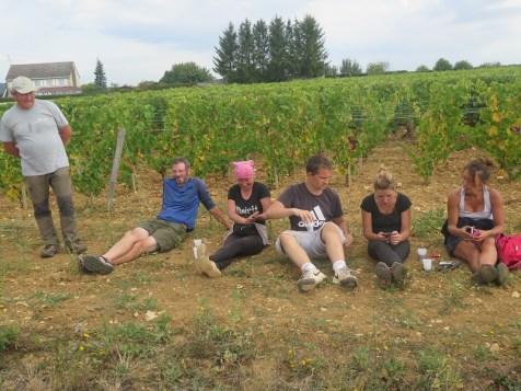 Arlaud Vendange Final Day Casse-Croute break after Aligote - L to R Jackie, Cedric, Laetitia, Antoine, Aurore & Sandrine