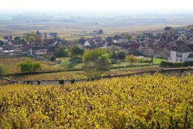 Over Volnay, looking towards the Clos des Ducs